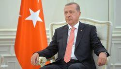 Президент Турции намерен обсудить с РФ удары по Сирии