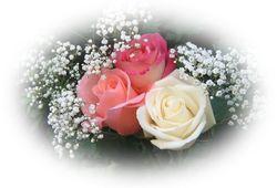 3 января – день рождения Михаэля Шумахера, Мела Гибсона и Гордона Мура