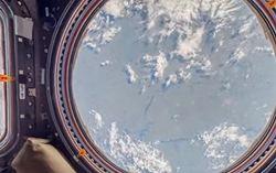 В Google теперь можно совершить виртуальный тур по МКС