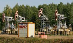 Как любое заявление влияет на стоимость нефти