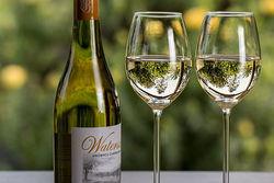 Правильный выбор белого вина