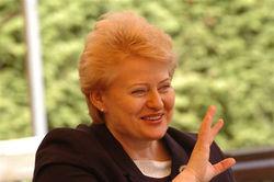 Президент Литвы в Тбилиси вспомнила о Тимошенко и призвала не повторять ошибок Украины