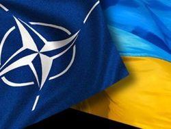 Бжезинский назвал для НАТО три способа военной помощи Украине