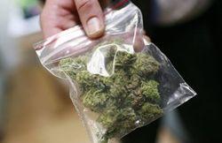 Продажа марихуаны в январе пополнила казну Калифорнии на 3,5 млн. долларов