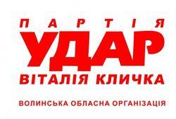 УДАР готовит заявление о покушении на жизнь Виталия Кличко