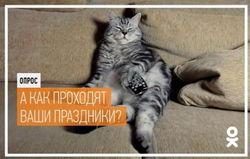 В «Одноклассниках» провели опрос о том, как прошли новогодние праздники