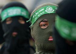 Активизацию Аль Каиды спровоцировал Вашингтон, объявив войну терроризму