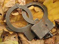 Сын дальневосточного депутата задержан за изнасилование – СМИ