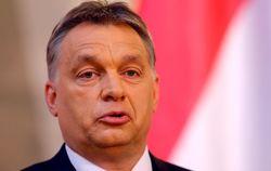 Премьер Венгрии требует автономии и двойного гражданства для венгров Украины