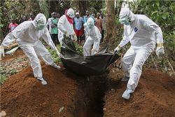 Европа под угрозой вируса Эбола