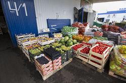 Закрытие овощных баз в Москве аукнется повышением цен – эксперты