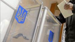 Вопреки позиции Кремля в Украину на выборы поедут 800 наблюдателей из России