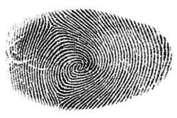 У украинцев будут брать отпечатки пальцев – решение парламента