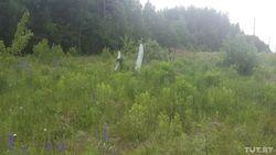 Белорусские ПВО сбили неопознанный летательный аппарат