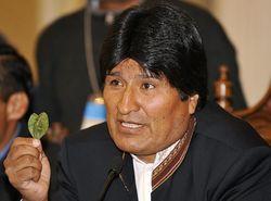 Президент Боливии разрешил вдвое увеличить плантации коки