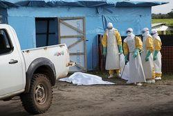 Лихорадка Эбола стала угрозой международного значения – ВОЗ