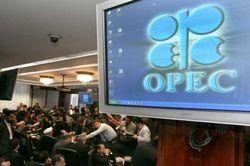 В ОПЕК договорились о замораживании объемов добычи нефти – СМИ