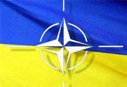Референдуму о членстве Украины в НАТО не быть – ЦИК