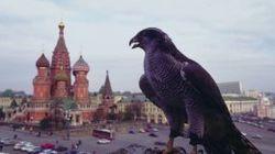 СМИ преувеличивают влияние «ястребов» и «голубей» на Путина – эксперты