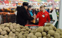 Картофель в России в 2017 г. подорожал на 24%