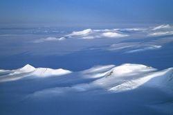 Ученые из Австралии сделали аварийную посадку в Антарктиде – причины