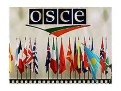 ОБСЕ созывает срочное заседание по ситуации в Украине