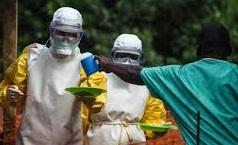 Лихорадка Эбола добралась до США