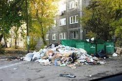 Почему буксует мусорная реформа в России?