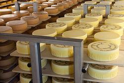 Россия теперь разрешает импорт сыров и мяса из Швейцарии