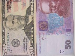Курс гривны к доллару США за полтора месяца девальвировал более чем на 50%