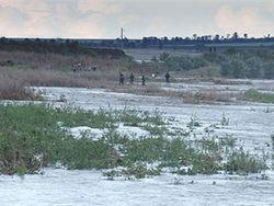 Тропические дожди – так специалисты назвали осадки в Одесской области