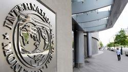 МВФ ожидает роста украинской экономики уже в следующем году