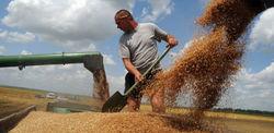 России не удастся заместить Украину на рынке зерна – министр сельского хозяйства РФ