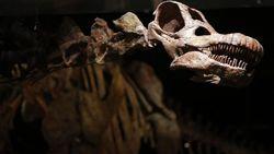 Бактерии времен динозавров до сих пор живут на Земле