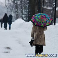 Элитная недвижимость Киева: на коттеджи ползут земля и деревья