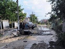 В Крымском районе сотнями жгут трупы утонувших животных