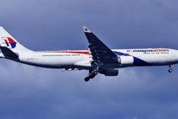 Крушение «Боинга» на Донбассе: на борту самолета могло быть 80 детей