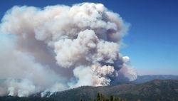 Ущерб от лесных пожаров в Калифорнии превысил 20 млрд. долларов