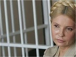 Гусак передал журналистам текст закона о лечении Тимошенко