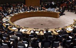 СБ ООН принял резолюцию по факту крушения лайнера Malaysia Airlines