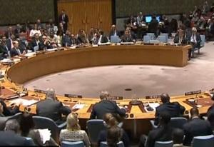 Россия и Китай покинули заседание членов Совбеза ООН, обсуждающего Сирию