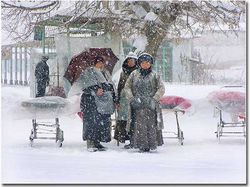 Узбекистан занесло снегом, морозы - до 30 градусов