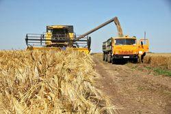 Украина снова на пороге сырьевого коллапса – экономист