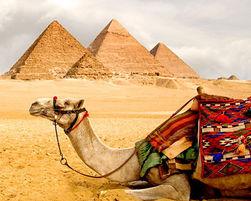 Боевики Египта призвали туристов уехать до 20 февраля