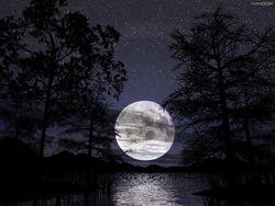 В США подготовили законопроект о приватизации Луны