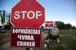 Россельхознадзор переживает за дееспособность коллег из Украины