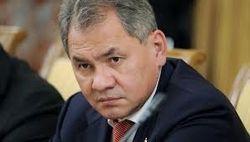 Шойгу возложил всю ответственность за сбитый Боинг на Киев
