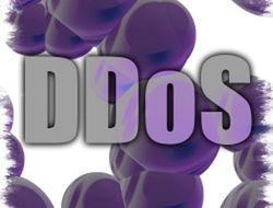 От DDoS-атак больше всего страдают корпоративные клиенты - исследования