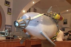 США направляют в Черное море боевых дельфинов