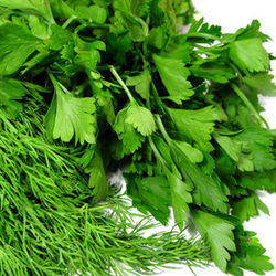 Рынки столицы Узбекистана наполнились свежей зеленью